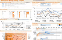 Beautiful Excel Dashboard with dynamic charts
